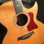 Reggie's Guitar